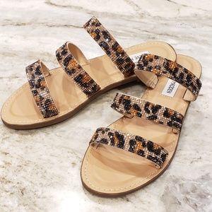 Steve Madden leopard rhinestone sandals